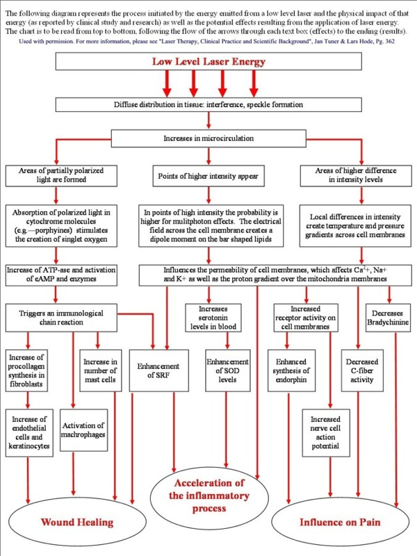Easy to Understand Flow Chart of LLLT (or how laser therapy makes