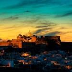 Maltese Paradise