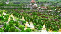 Tropical Garden Nong Nooch In Thailand Stock video footage ...
