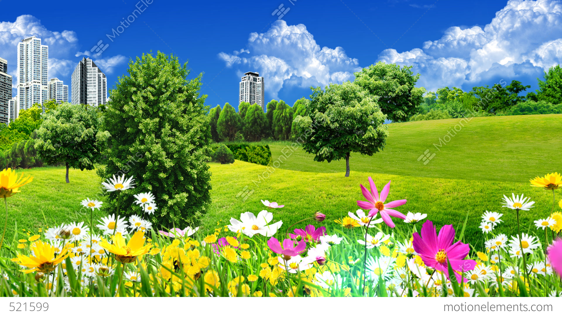 3d Money Wallpaper Green Meadows And Flowers Stock Animation 521599