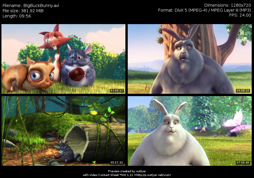 Video Contact Sheet *NIX OutlyerNet Projects - sample contact sheet