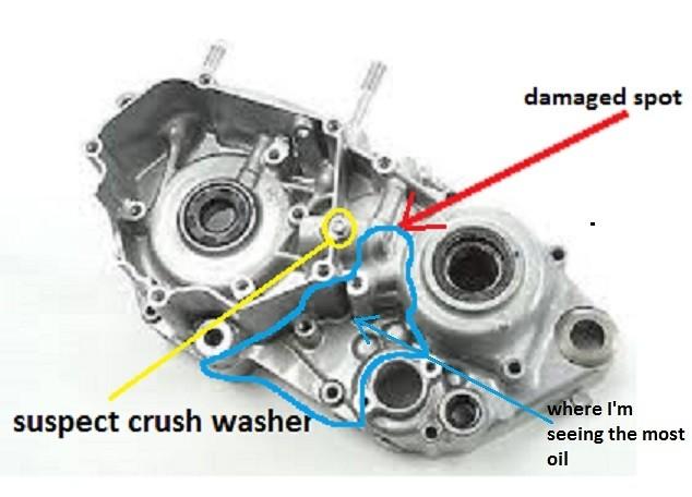YZ250) Help me find this oil leak - Tech Help/Race Shop - Motocross