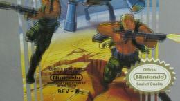 NES game variant