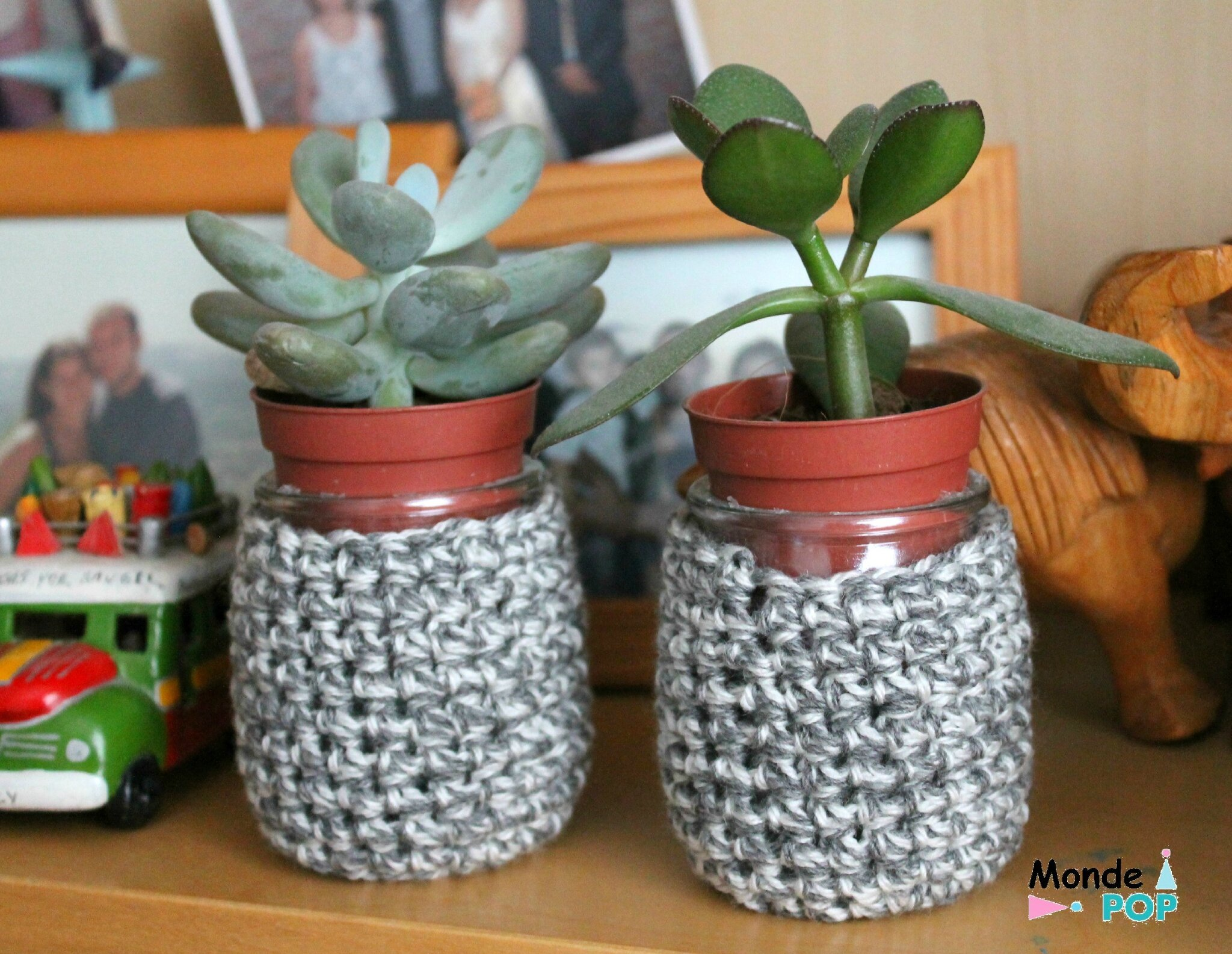 Plantes Increvables Les Succulentes Les Plantes Presque Increvables Monde Pop