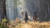 Stem op de Paarden Oppas Service en win een ruiterarrangement