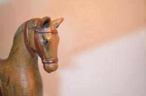 Paarden Oppas Service over keuze ruin of merrie