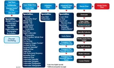 PADI-Con-Ed-Flow-Chart
