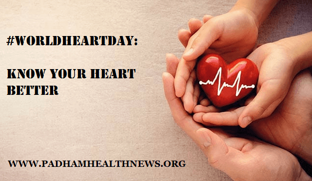 What You Must Know About Your Heart