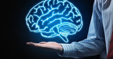 Amazing Facts About The Human Brain