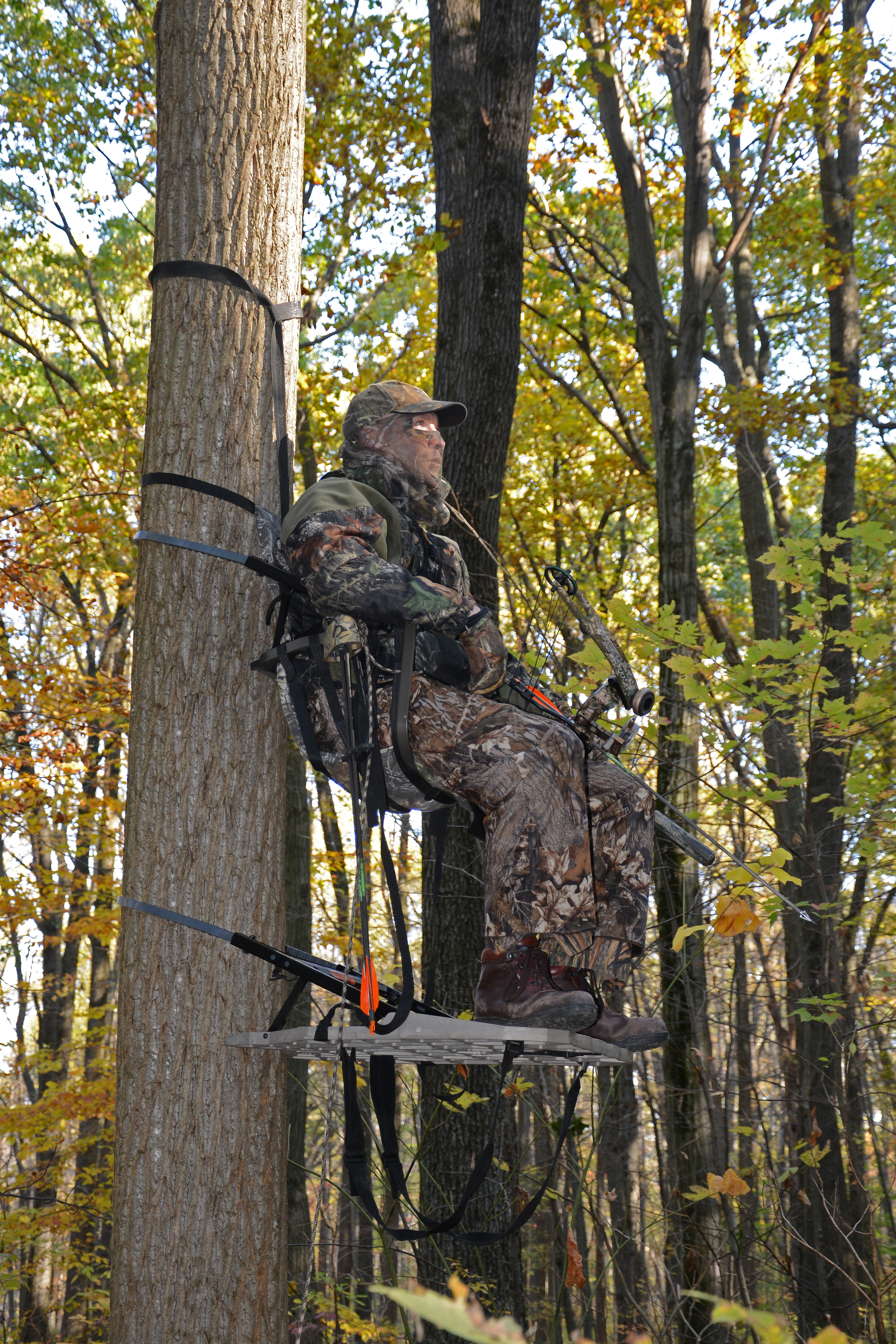 Hunting For Tree Stand Regulations From The Field