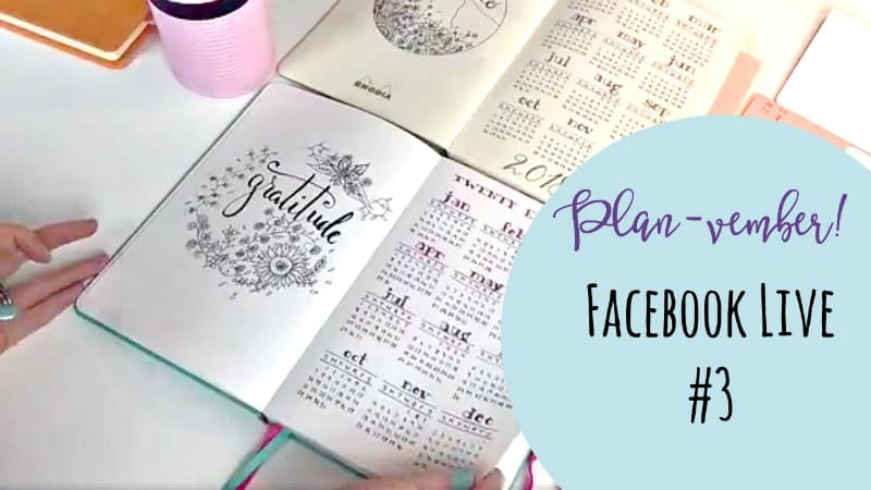 Planvember Day 3 Year-at-a-Glance Calendar Page (Facebook Live