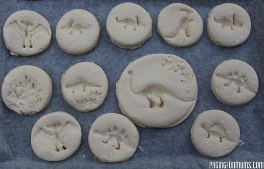 DIY Dinosaur Fossils!