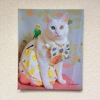 【ギャラリー75】「コスプレにゃんこ」キャンバスフォト展示~「盲導犬クイールの一生」のフォトグラファー 秋元良平と仲間たち