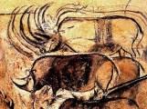 chauvet-cave-art