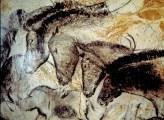 chauvet_horses2