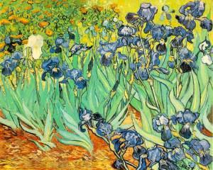 030607-gogh-irises