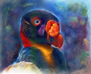 110609_bobbo-goldberg-artwork