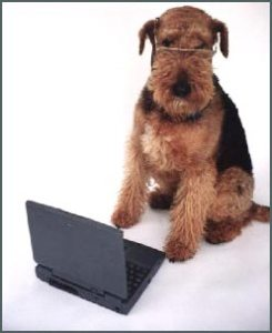 082614_emily-laptop