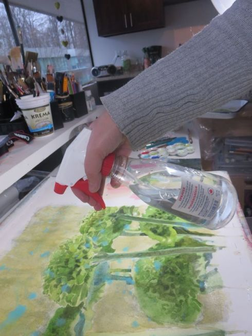 spraying with a spray bottle