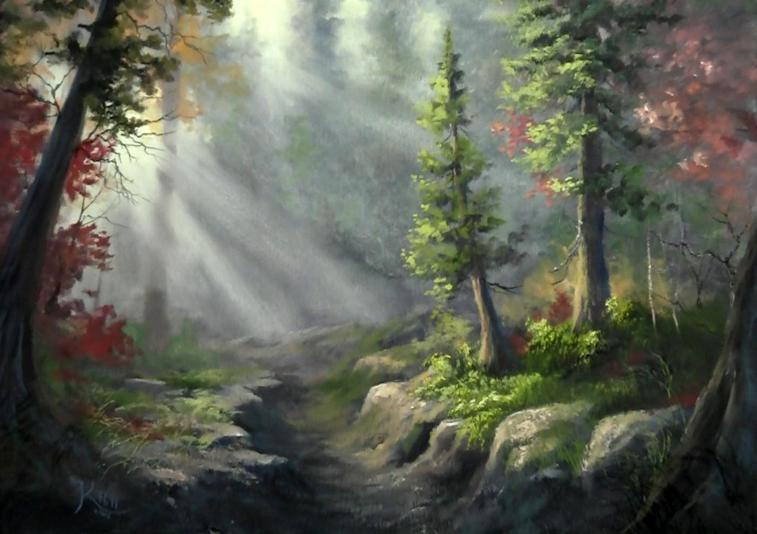 Birch Tree Fall Wallpaper Close Up Dvd Digital Downloads Paint With Kevin 174