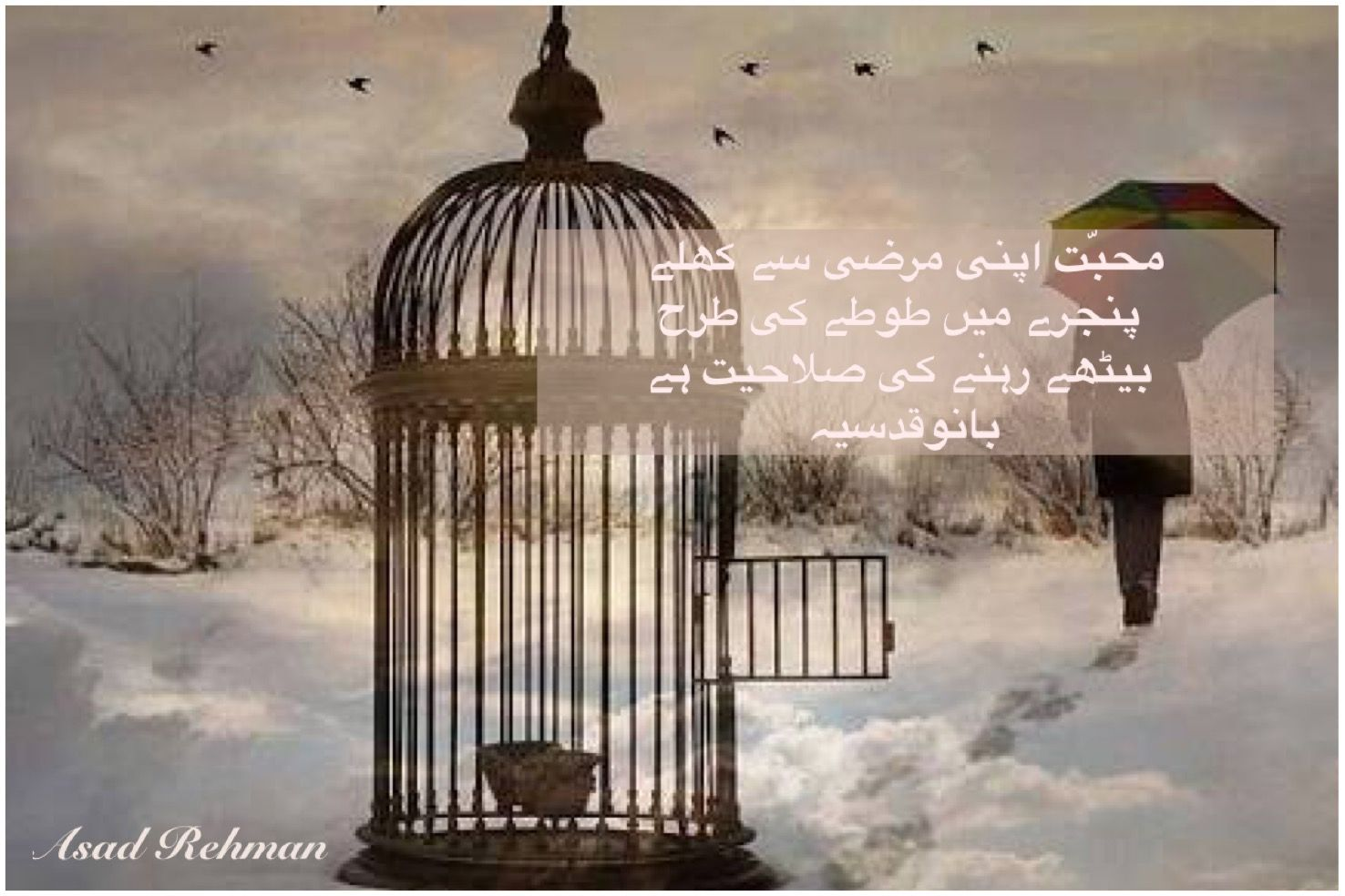 Bano Qudsia Dialogue Urdu Bano Quotes Qudsia