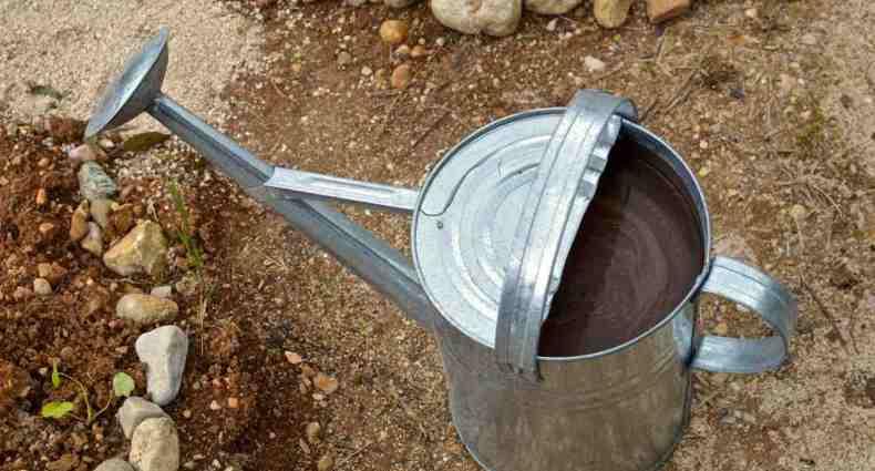 fertiliser from kitchen leftovers