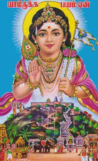 Wallpaper Images With Tamil Quotes Names Of Palani Lord Murugan