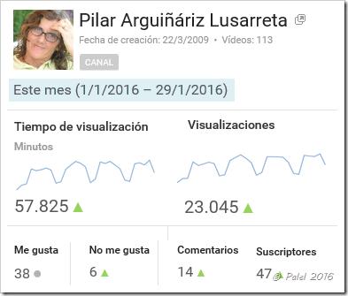 Estadísticas enero 2016 - palel.es