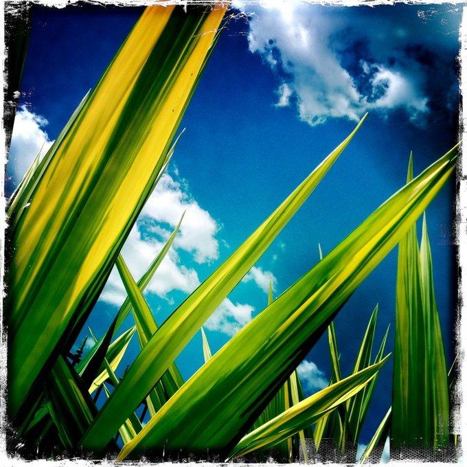 Paleo-Outdoors-Sunshine mistakes 680-min