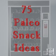 75 paleo snack ideas suggestions inspiration recipes-min