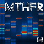 MTHFR genetic testing DNA paleo mutation methyl-tetrahydrofolate reductase heterozygous 1298C 677T weight loss-min