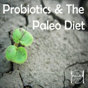 Probiotics and the paleo diet-min