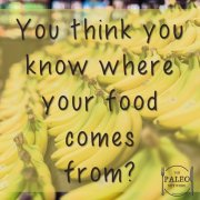 Where does your food come from paleo network-min