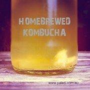 Paleo kombucha recipe scoby brew ferment fermented-min