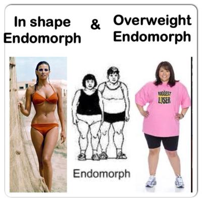 How to Eat For Endomorph Body Type