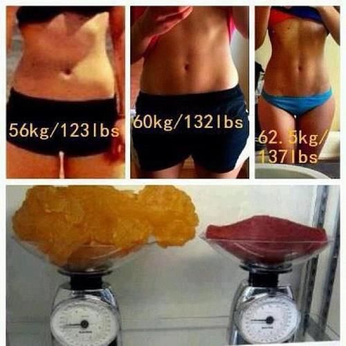 fat muscle