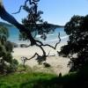 beach (600x338)