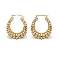 14k Gold Shrimp-Style Hoop Earrings Nano Diamond Resin ...