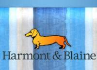 Image {focus_keyword} Harmont&Blaine, primi nove mesi ebitda a +43,5% 37651 20091118113633