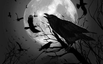 MoonRaves