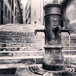 MJose-Cinti-fontana