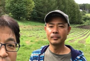 無農薬、無化学肥料栽培の野菜を食べよう!なんごう・ゆめファームがおすすめ!