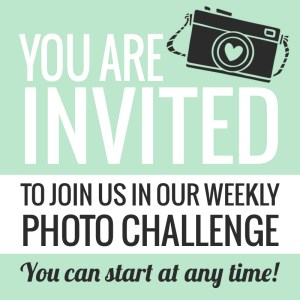 Invited - Photo Challenge - Paper and Landscapes