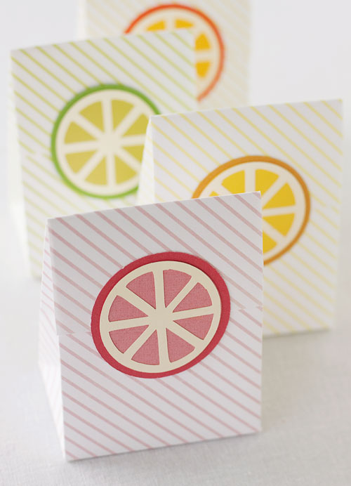 Citrus Slices SVG + Studio + Download Box Template