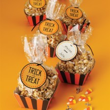 Martha Stewart Crafts Carnival Treat Bags