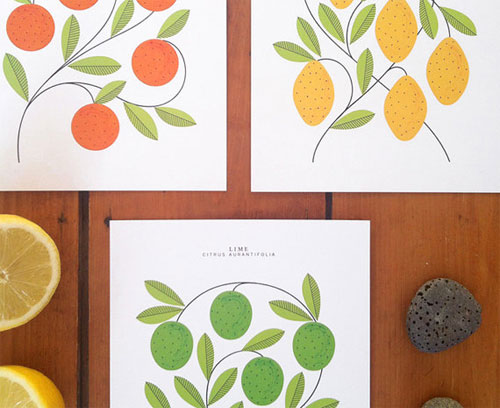 Citrus Art Prints | Sarah Abbott