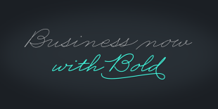 Business Penmanship Font by Sudtipos