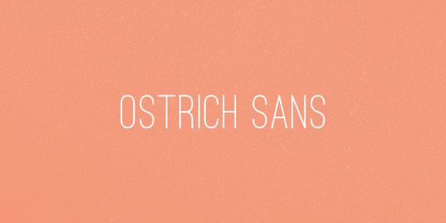 Ostrich Sans Font by Tyler Finck