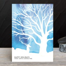 Northern Lights Business Holiday Cards by Alex Elko