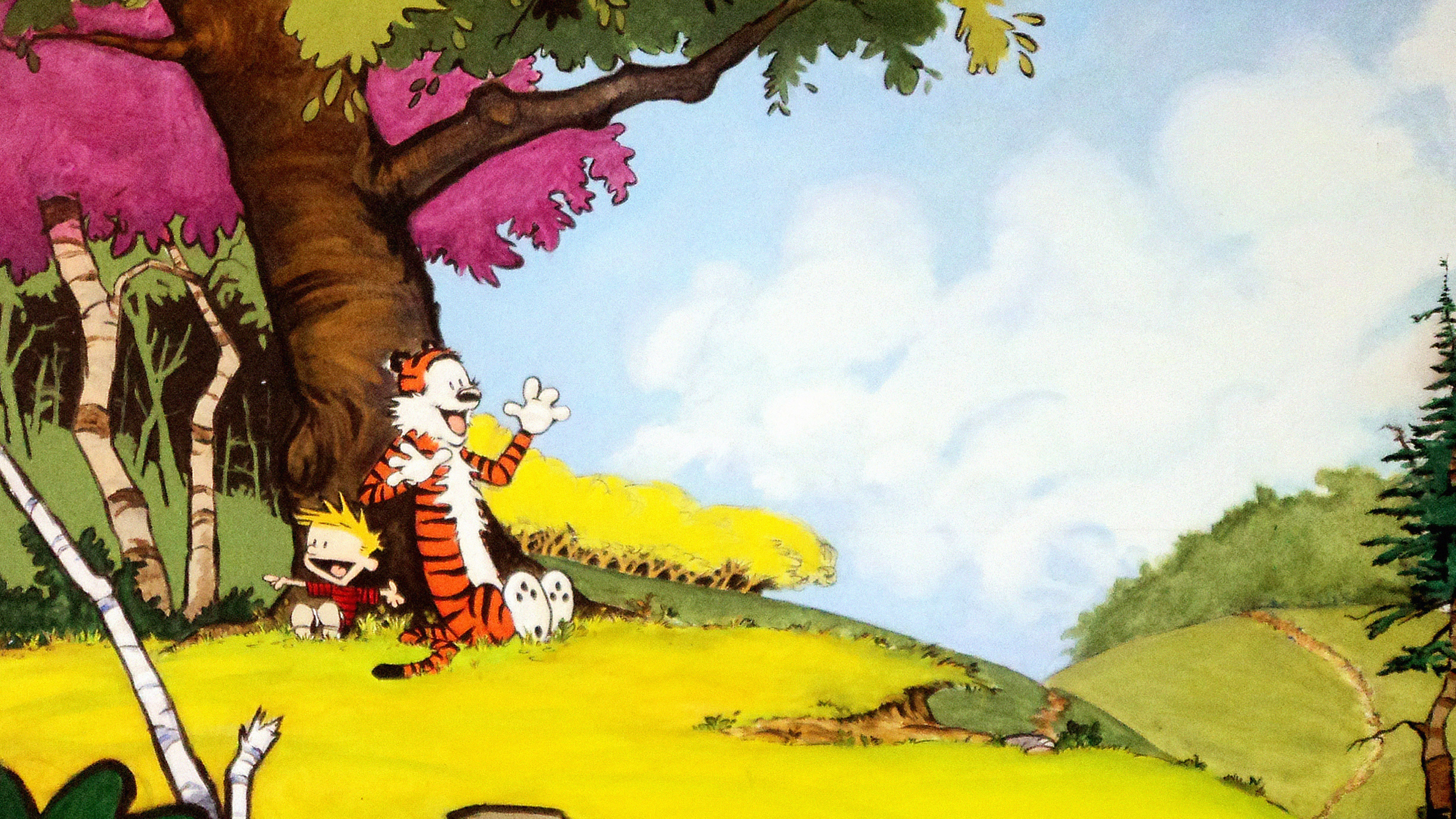 Green Animal Wallpaper Ac48 Wallpaper Calvin And Hobbes After Nap Papers Co